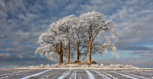 无以言语的冬日美景